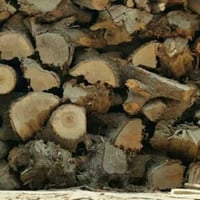 Natural Firewood For Boiler