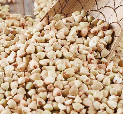 Yellow Sweet Buckwheat Grain