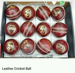 Cricket Brown Leather Ball