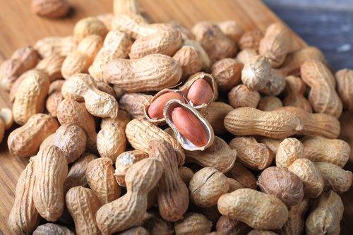 Highly Nutritious Peanut Kernel