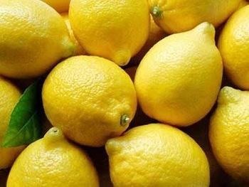 Farm Fresh Yellow Lemon