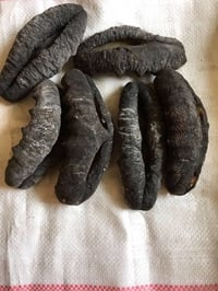 High Protein Dry Sea Cucumber