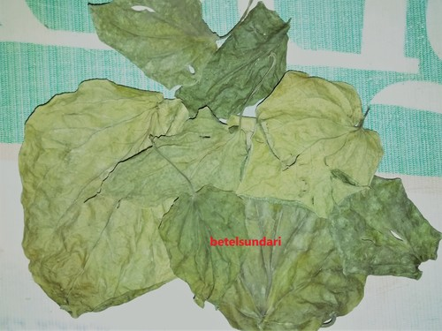 Dry Aroma Betel Leaves