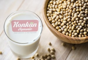 Natural Soy Beans Seeds