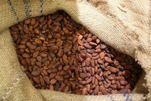 Cocoa Bean Grade 1