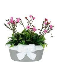 Colored Artificial Flower Plant