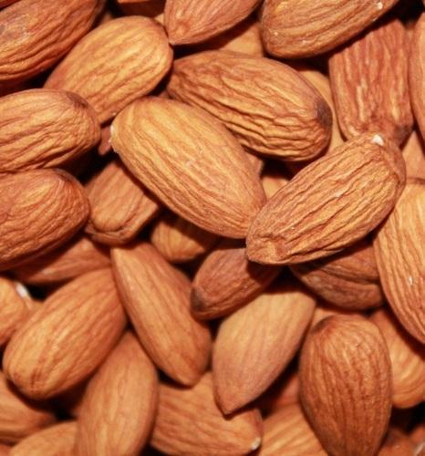 Fresh Almond Nut