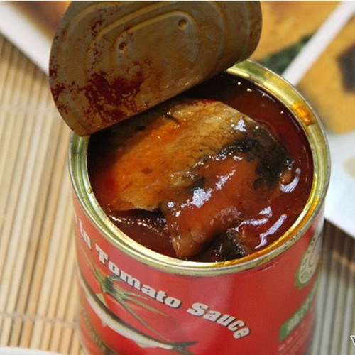 Canned Sardine Fish