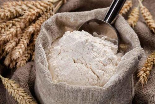 Organic Wheat Flour (Multi Grain)
