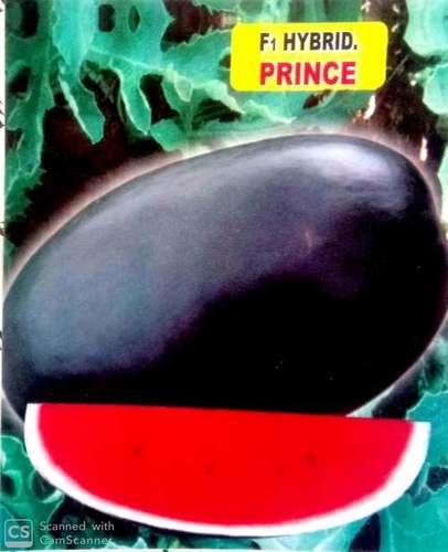 Watermelon F1 Hybrid Prince Seed