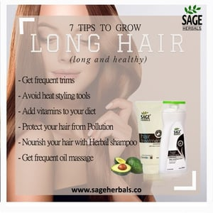 Sage Hair Treatment Shampoo and Conditioner