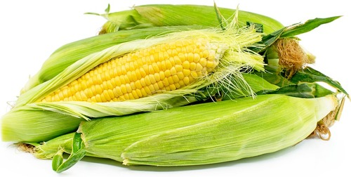 Multi Vitamins Yellow Corn Crop Year: Current Years