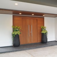 Residential And Commercial Building Doors