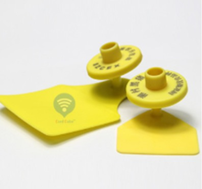 Rfid Waterproof Animal Ear Tag