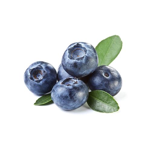 Blueberry Fruit Flavor