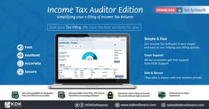 Income Tax Software Services