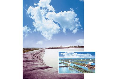 HDPE Pond Liner Sheet