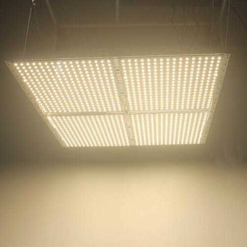 Quantum Board LED Grow Light in Shenzhen, Guangdong
