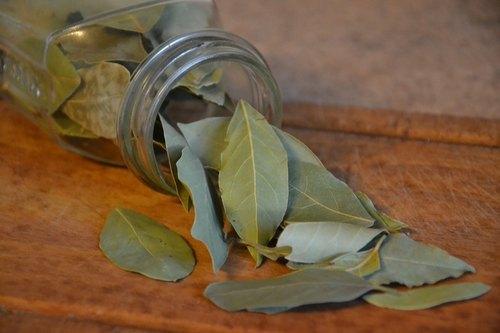 Green Bay Leaf (Tej Patta)