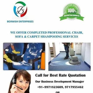 Chair, Sofa And Carpet Shampooing Services