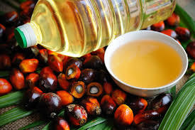 Organic Refined Nutritious Palm Oil