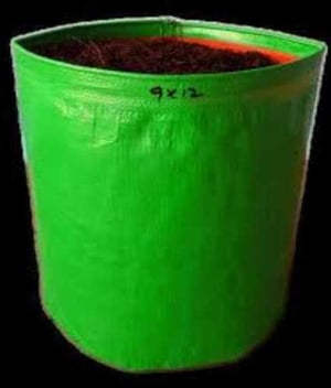 Root Pouch Degradable Grow Bags