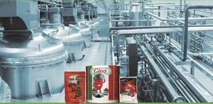 Tomato Paste Filling And Packaging Machine
