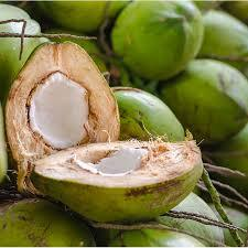 Pure Natural Green Coconut