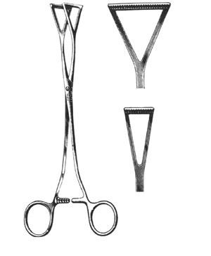 Collin Intestinal Forceps For Surgical