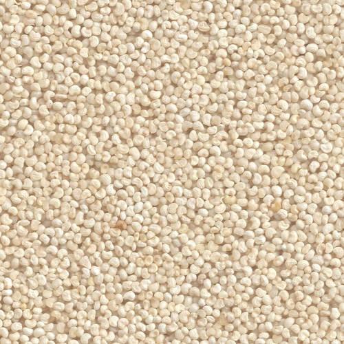 Creamy White Poppy Seeds (Khus Khus)