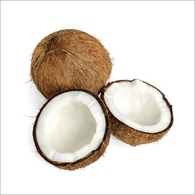 Fresh Coconut In Madurai, Fresh Coconut Dealers & Traders In