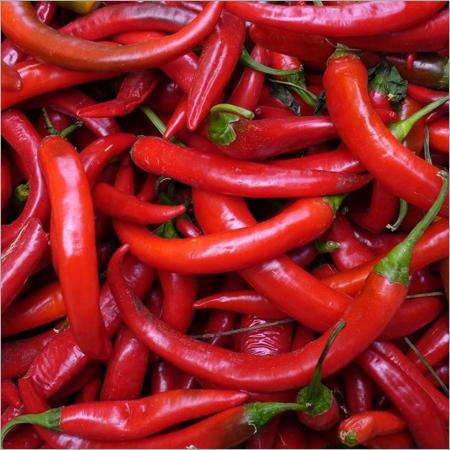 Dry Chili Powder