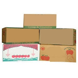 Pomegranate Packaging Boxes