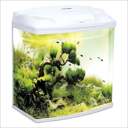 Mini Aquarium, Mini Aquarium Manufacturers & Suppliers, Dealers