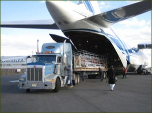 Air Cargo Clearing Agent
