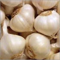 Indian Garlics