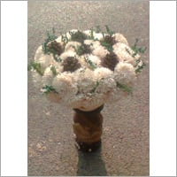 Dry Jinia Flower And Pine Dry Grasss