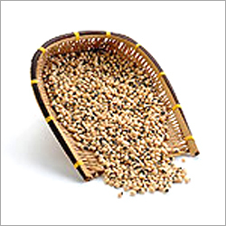 Nutritious Pulses