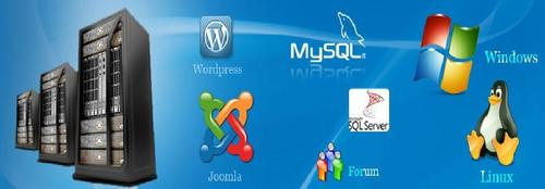 Website Hosting