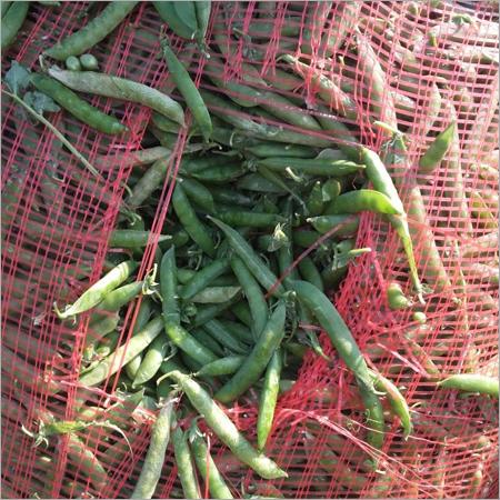 Fresh Green Matar