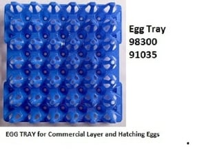 Blue Color Egg Tray