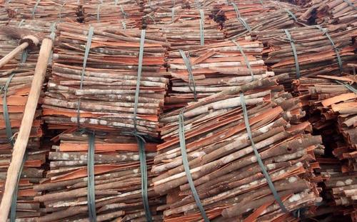 Vietnam Dried Split Cassia