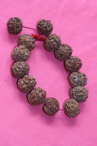 Rudraksha Fancy Hand Bracelet