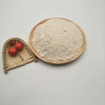Organic Rice Protein Powder As Vegan Food