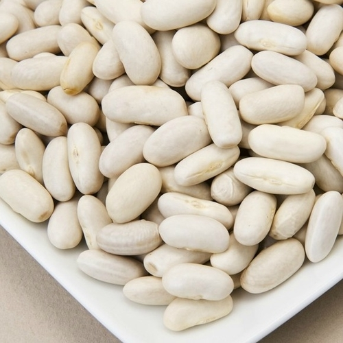 White Kidney Bean - Manufacturers & Suppliers, Dealers