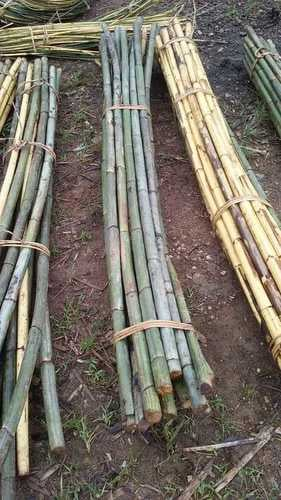 Bamboo And Rattan Poles