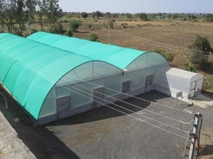 Easily Assembled Green Polyhouse