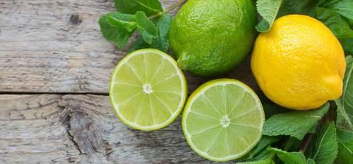 Fresh Seedless Lime Lemon