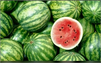 High Nutritional Value Fresh Watermelon