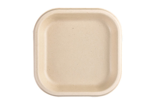 Disposable Chuk Plate (7Inch)